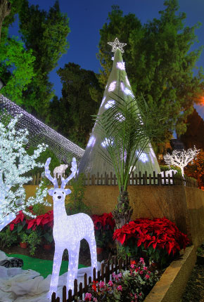 beirut-christmas-decoration-03.jpg