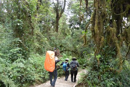 kilimanjaro-trip-03-big.jpg